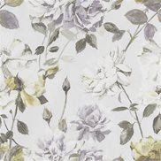 Designers Guild Tapet Couture Rose Mauve