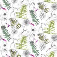 Designers Guild Tyg Acanthus Moss