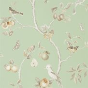 Sanderson Tapet Fruit Aviary Sage/Neutral