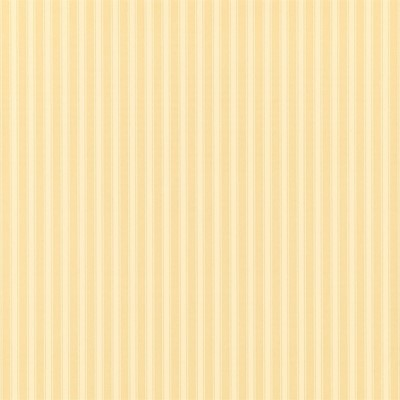 Sanderson Tapet New Tiger Stripe Honey/Cream