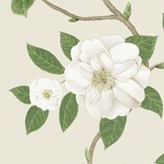 Sanderson Tapet Christabel Ivory/Cream