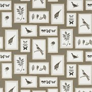 Sanderson Tapet Picture Gallery Taupe/Sepia