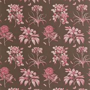 Sanderson Tyg Etchings & Roses Chocolate/Pink