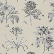 Sanderson Tapet Etchings & Roses Ivory