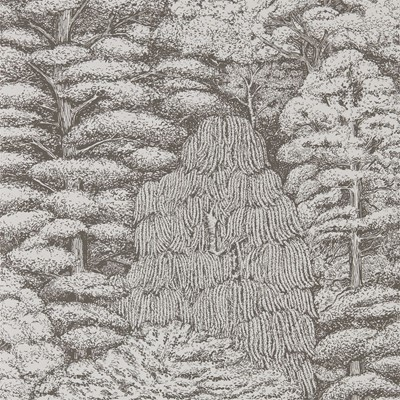 Sanderson Tapet Woodland Toile Ivory/Charcoal