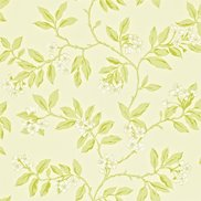 Sanderson Tapet Blossom Bough Cream/Sage